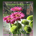Gerberas and Mums Birthday Card by kathrynsgallery