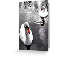 Swans on Tooting Common Greeting Card
