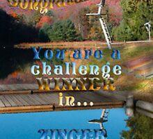 CHALLENGE WINNER BANNER FOR ZINGER GROUP by vigor