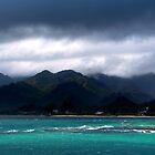 Stormy Reef by Masterclass