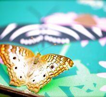 Butterfly Garden by Ginadg73