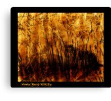 Panthera Tigris, essence Canvas Print