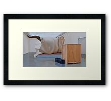 Museum X (Shrouded), Oil on Linen, 51x91cm. Framed Print