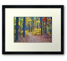 Deep in the Heart of Color Framed Print