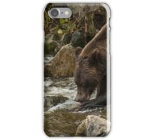 Oh my what big claws you have iPhone Case/Skin