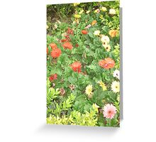 A beautiful happy flower dance Greeting Card