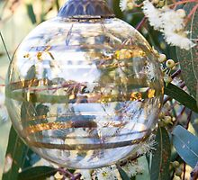 Bauble in Red Gum Blossoms by Kate Schofield