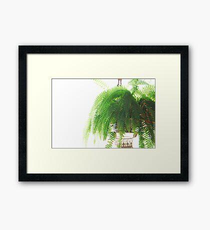 Furn-Green Framed Print