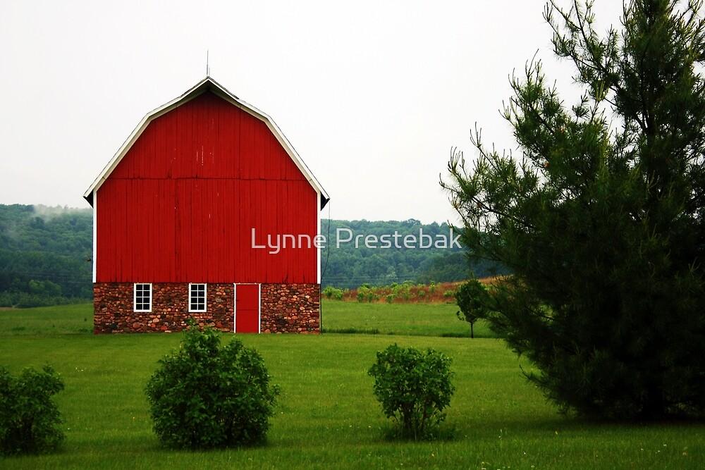 red barn, chippewa county, wisconsin by Lynne Prestebak