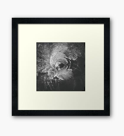 Echo. Framed Print