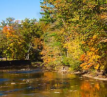 Rocky River Reflections by Henry Plumley