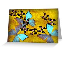 my little beautiful butterfly Greeting Card