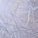 Cold as Ice by Irina Chuckowree