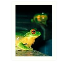 They mostly come at night... mostly... (Litoria Chloris) Art Print
