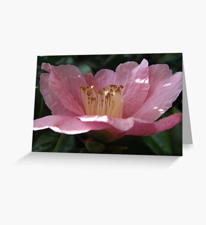 Crumpled Flower Greeting Card