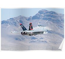 EA-18G Growler, 166894 Cruising Out Poster