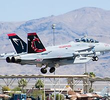 EA-18G Growler, 166894, Taking Off by Henry Plumley