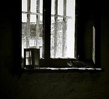 Redruth window by Penny Kittel