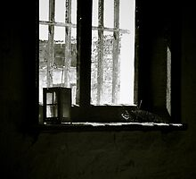 Redruth window by kurrawinya