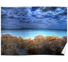Tasmanian Water 2 Poster
