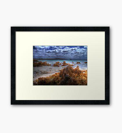 Tasmanian Water Framed Print
