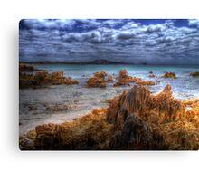 Tasmanian Water Canvas Print
