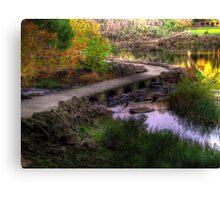 River Path Canvas Print