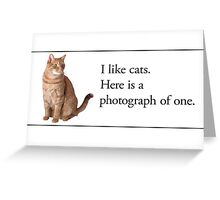 Cards for Engineers - Cats are nice Greeting Card
