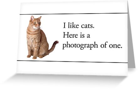 Cards for Engineers - Cats are nice by Tim Norton