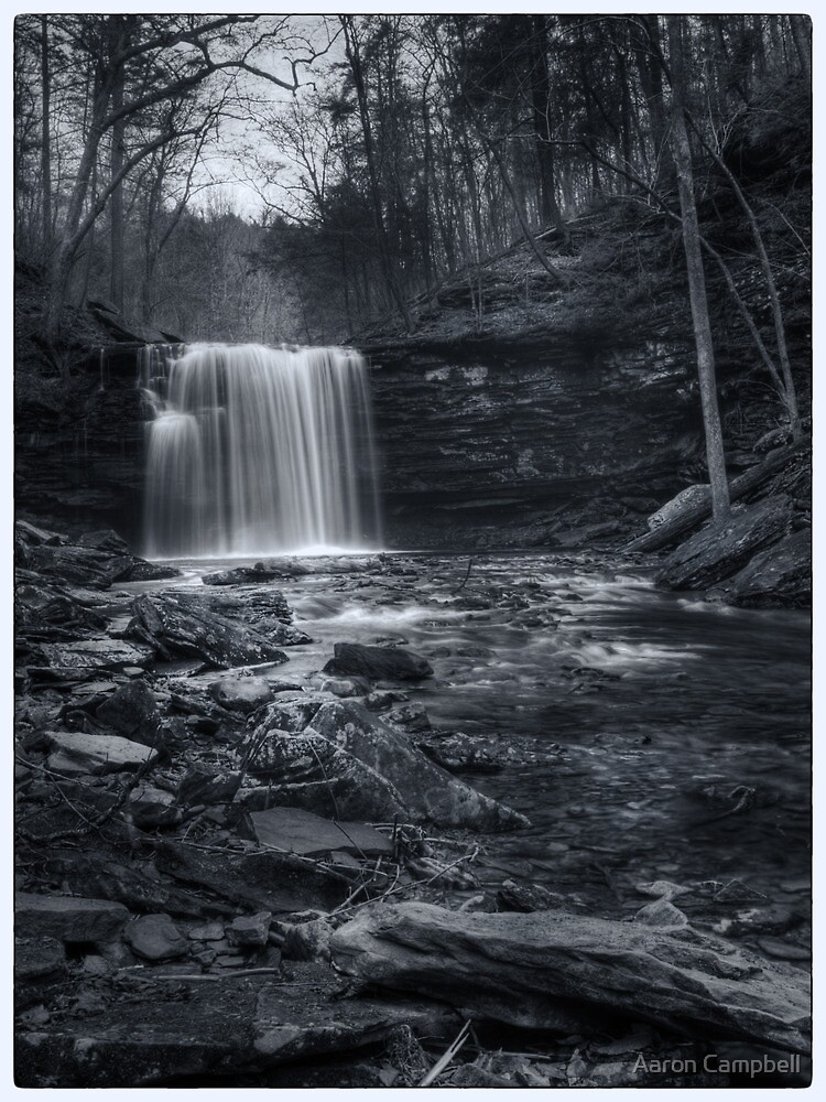 Harrison Wright Falls November 2011 by Aaron Campbell