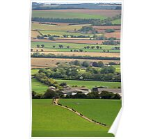 Cows coming home in the Meon Valley, West Sussex, UK Poster