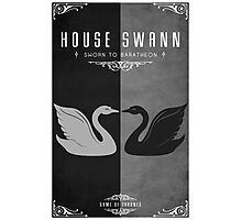 House Swann Photographic Print