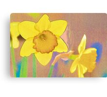Textured Daffodils Canvas Print
