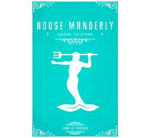 House Manderly Photographic Print