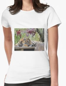 Beautiful Tiger Photo - animal lovers Womens Fitted T-Shirt