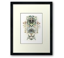 Antique pattern - Spider and Moths Framed Print