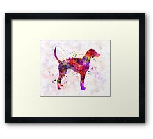 American Foxhound in watercolor                   Framed Print