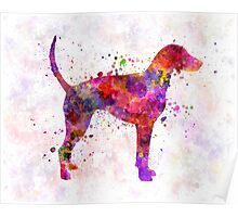 American Foxhound in watercolor                   Poster