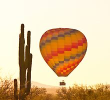 Golden Light Hot Air Balloon And Saguaro Cactus by Bo Insogna