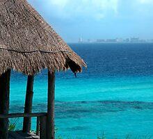Cancun Afar by Gina Collins