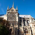 Notre-Dame de Paris - Side view by Fabio Procaccini
