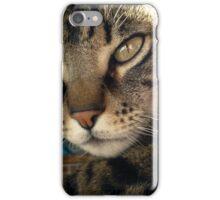 beautiful cat iPhone Case/Skin