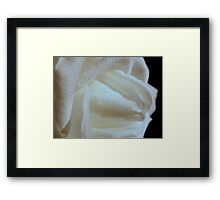 Middle Earth Rose  Framed Print