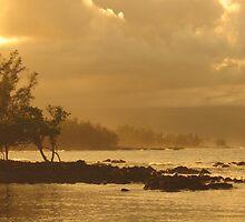 Hilo Shorelines by ronholiday
