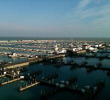 Dock on Lake Michigan by Randen Weinholtz