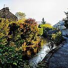 Stream in Bakewell by Mark Dobson