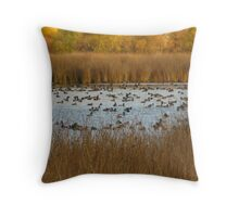 Nature's natural Beauty Throw Pillow