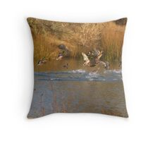 Let's get out'a here....~! Throw Pillow