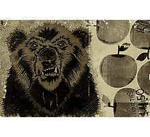 """BEAR FRUIT"" Photographic Print"