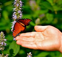 Butterfly and the Boy III by Ginadg73